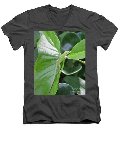 Lizard Waimea Trail Men's V-Neck T-Shirt