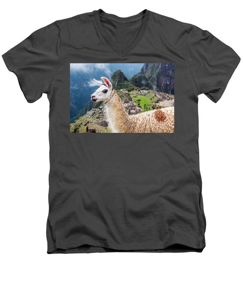 Llama At Machu Picchu Men's V-Neck T-Shirt by Jess Kraft
