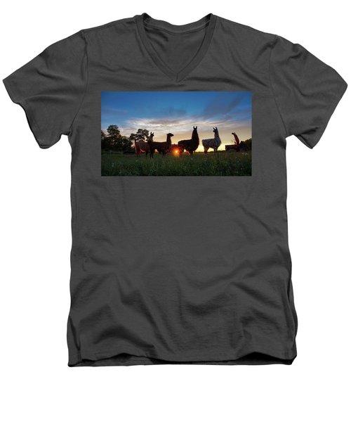 Llamas At Sunset Men's V-Neck T-Shirt