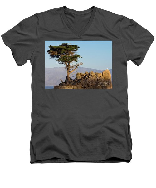 Lone Cypress Tree  Men's V-Neck T-Shirt