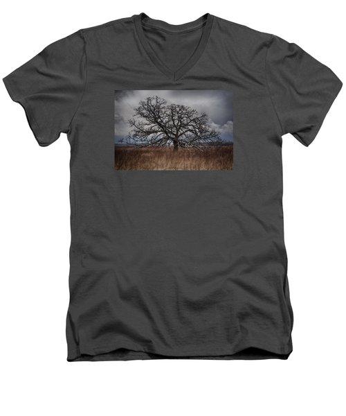Loan Oak II Men's V-Neck T-Shirt by Dan Hefle