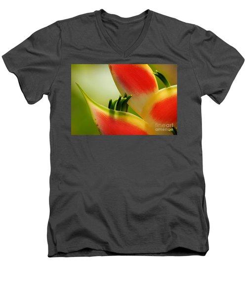 Lobster Claw Flower Men's V-Neck T-Shirt