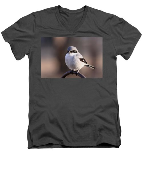 Loggerhead Shrike - Smokey Men's V-Neck T-Shirt by Travis Truelove