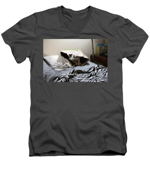 Lois's Favorite Cat Picture In The Whole Wide World Men's V-Neck T-Shirt
