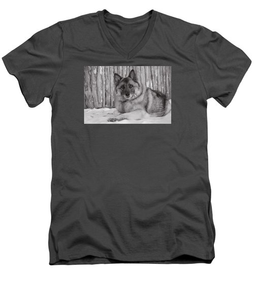 Loki By Fence Men's V-Neck T-Shirt