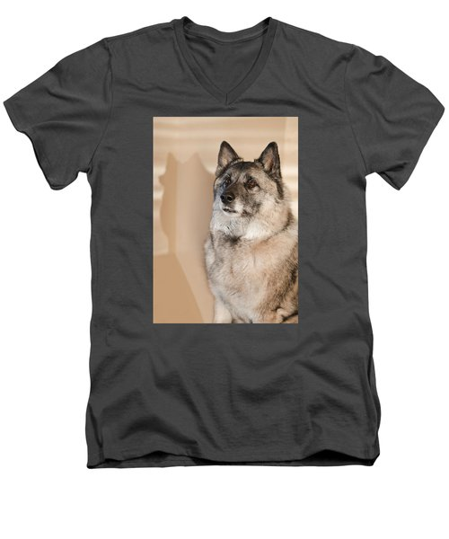 Loki Sepia Men's V-Neck T-Shirt