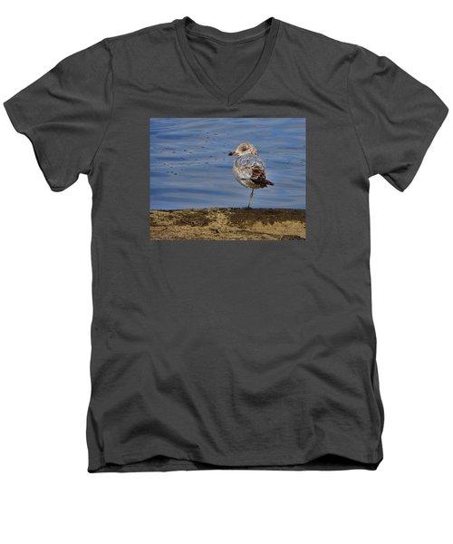 Lone Bird Men's V-Neck T-Shirt