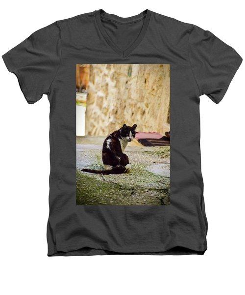 Lone Cat Men's V-Neck T-Shirt