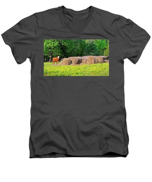 Lone Cow Guard, Smith Mountain Lake Men's V-Neck T-Shirt