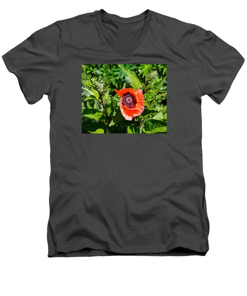 Caught My Eye Men's V-Neck T-Shirt