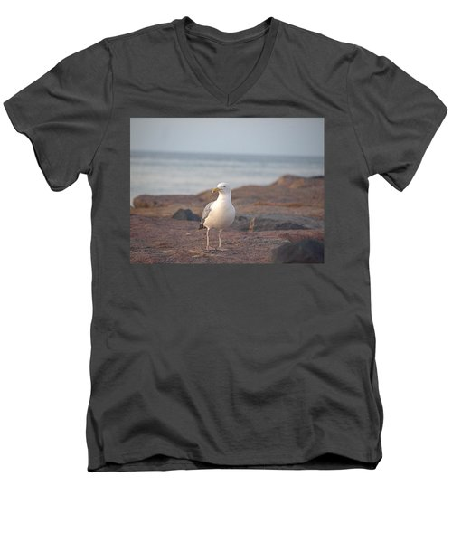 Men's V-Neck T-Shirt featuring the photograph Lone Gull by  Newwwman
