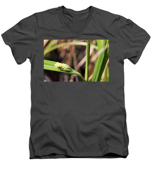 Lone Tree Frog Men's V-Neck T-Shirt