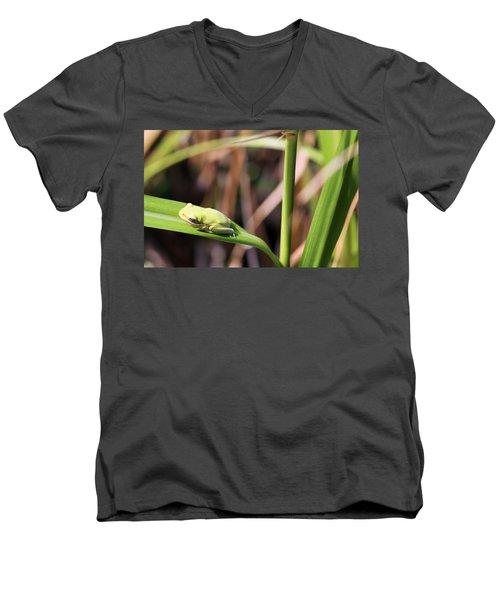 Lone Tree Frog Men's V-Neck T-Shirt