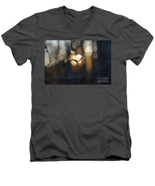 Lonely Tree Branch With Bokeh Love -georgia Men's V-Neck T-Shirt