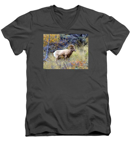 Long Horns Sheep Men's V-Neck T-Shirt