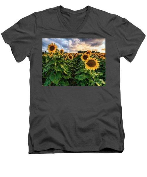 Long Island Sunflowers  Men's V-Neck T-Shirt