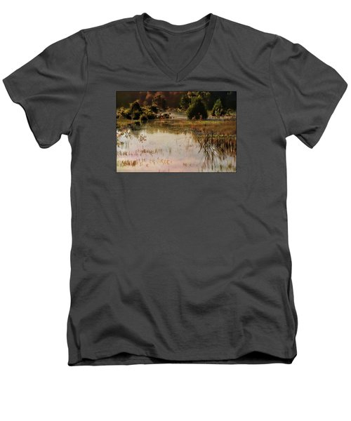 Long Pond Misty Morning Men's V-Neck T-Shirt