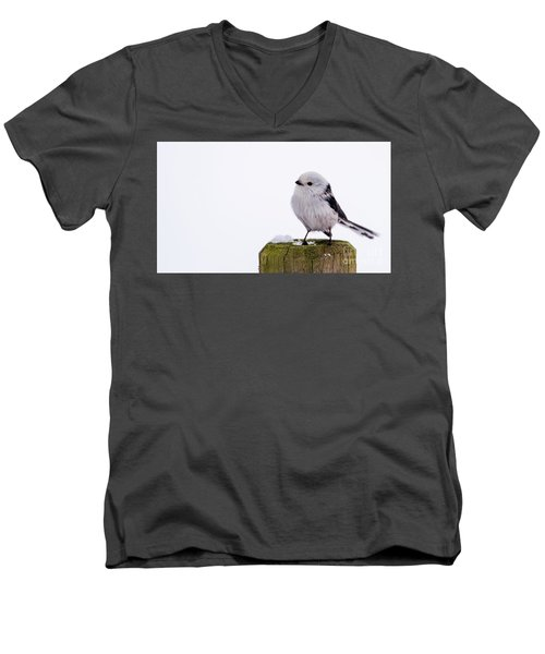 Long-tailed Tit On The Pole Men's V-Neck T-Shirt by Torbjorn Swenelius