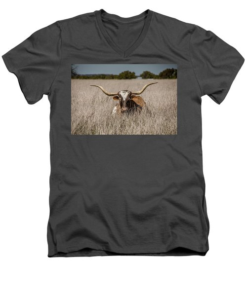 Longhorn In The Grass - 2571 Men's V-Neck T-Shirt
