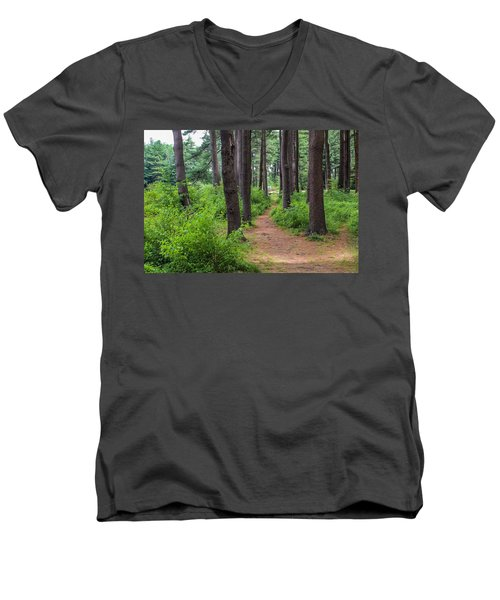 Look Park Nature Path Men's V-Neck T-Shirt