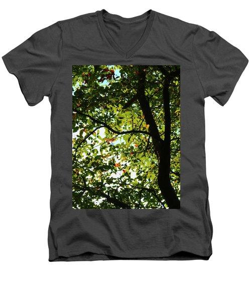 Looking Thru The Leaves Three Men's V-Neck T-Shirt