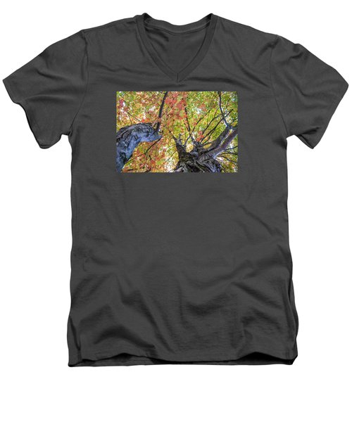 Looking Up - 9670 Men's V-Neck T-Shirt