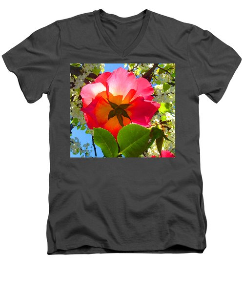 Looking Up At Rose And Tree Men's V-Neck T-Shirt