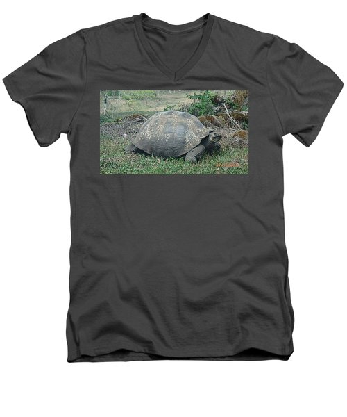 Looking Men's V-Neck T-Shirt by Will Burlingham