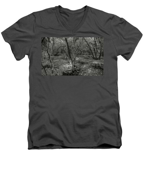 Loop Road Swamp #3 Men's V-Neck T-Shirt
