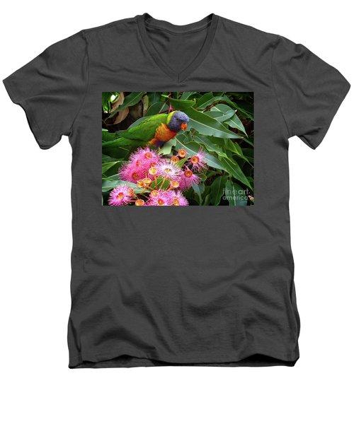 Lorikeet Men's V-Neck T-Shirt