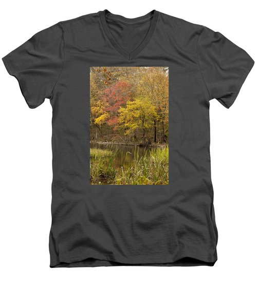 Lost Creek Autumn Men's V-Neck T-Shirt