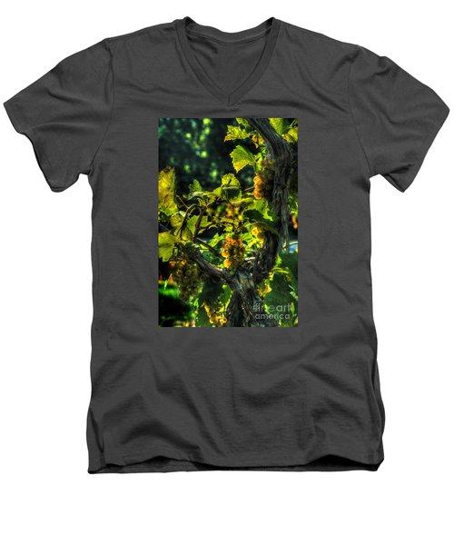 Men's V-Neck T-Shirt featuring the digital art Lost Creek Chardonel by William Fields