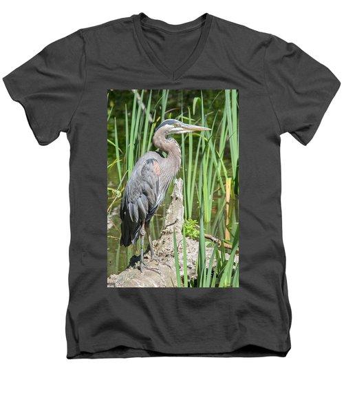 Lost Lagoon Heron Men's V-Neck T-Shirt by Ross G Strachan