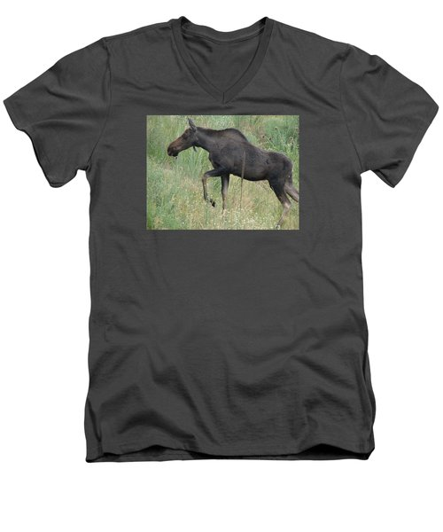 Lost Moose On The Loose In Evergreen Colorado Men's V-Neck T-Shirt