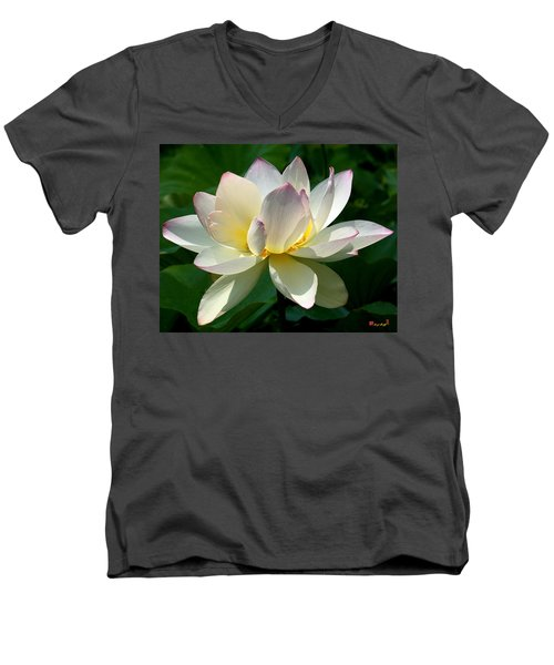 Lotus Beauty--disheveled Dl061 Men's V-Neck T-Shirt