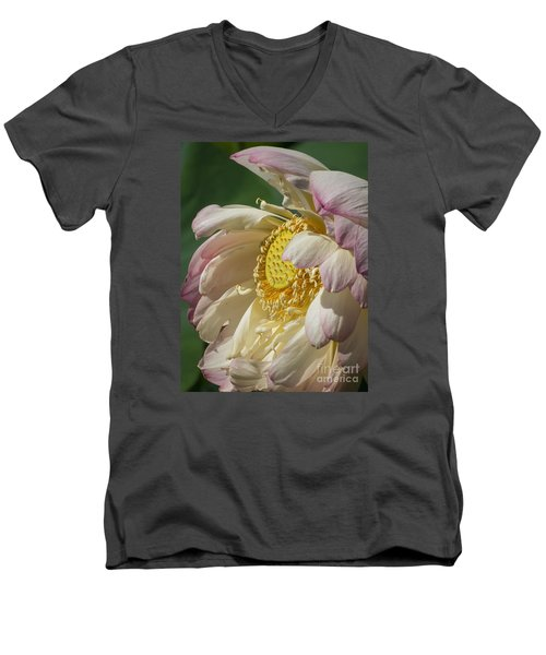Lotus Glory Men's V-Neck T-Shirt