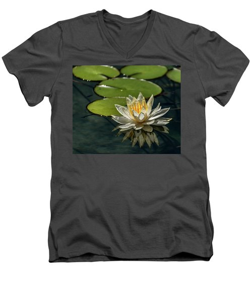 Lotus Men's V-Neck T-Shirt by Martina Thompson