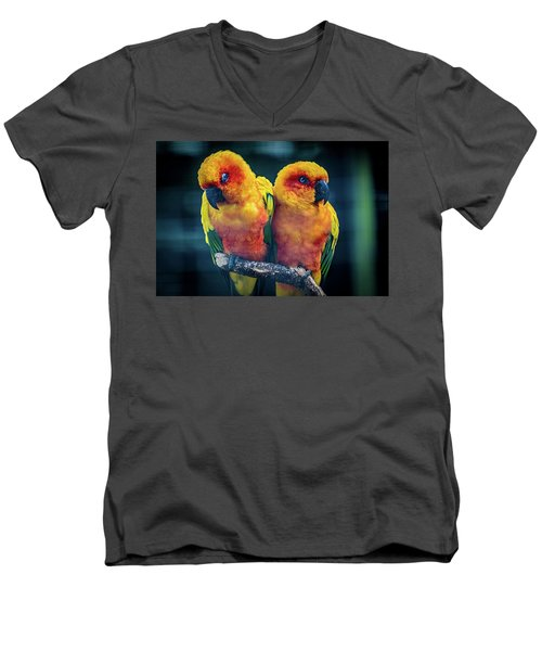 Men's V-Neck T-Shirt featuring the photograph Love Birds by Chris Lord