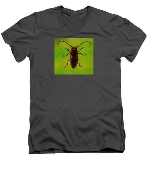 Love Bug Men's V-Neck T-Shirt