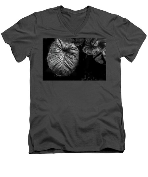 Men's V-Neck T-Shirt featuring the photograph Low Key Nature Background, Textured Plants, Leaves For Decorativ by Jingjits Photography