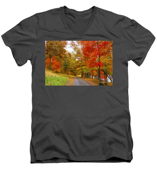 Lower Lake Loop Trail Men's V-Neck T-Shirt by Barbara Bowen
