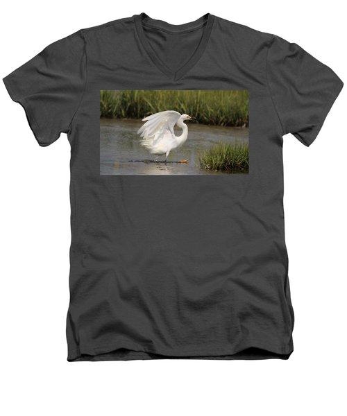 Lucky Capture Men's V-Neck T-Shirt