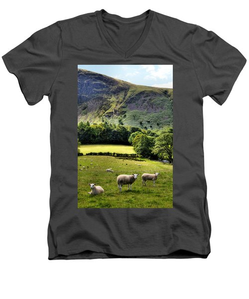 Lucky Sheep Men's V-Neck T-Shirt