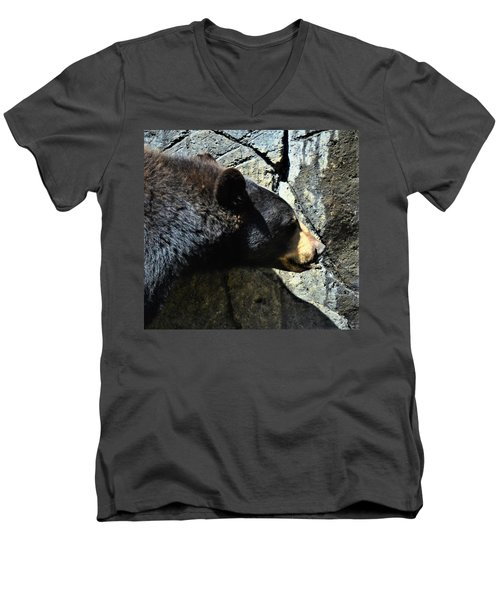Lumbering Bear Men's V-Neck T-Shirt