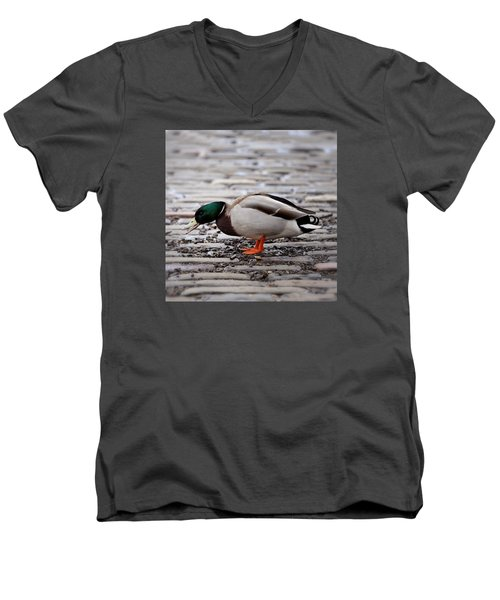 Men's V-Neck T-Shirt featuring the photograph Lunch Time by Jeremy Lavender Photography