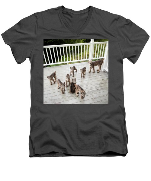 Lynx Family Portrait Men's V-Neck T-Shirt