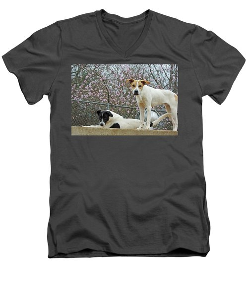 Maddy And Sammy Springtime Men's V-Neck T-Shirt