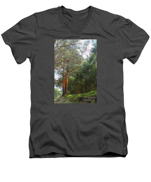 Men's V-Neck T-Shirt featuring the photograph Magnificent Maui by DJ Florek