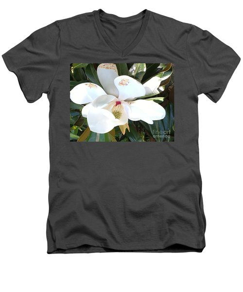 Men's V-Neck T-Shirt featuring the photograph Magnolia Tree Bloom by Debra Crank