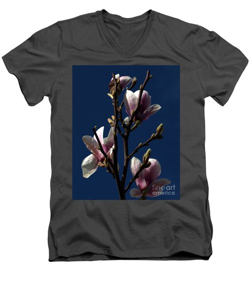 Men's V-Neck T-Shirt featuring the photograph Magnolia Tree by Stephen Melia